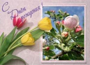 Фото редактор. Создание открыток