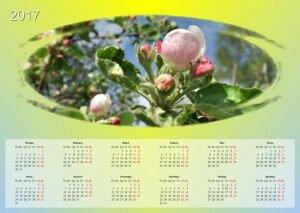 Фото редактор. Создание календаря